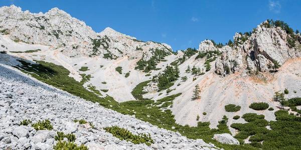 Suťové svahy Schneebergu z východnej strany
