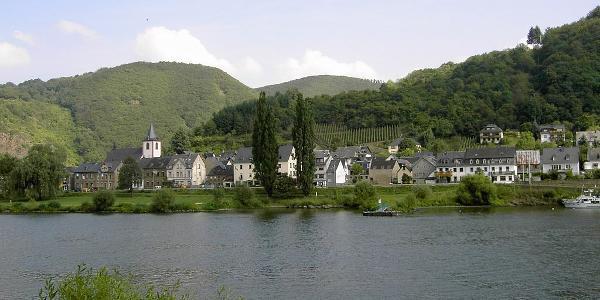Burgen  (Mosel) vom anderen Ufer aus gesehen