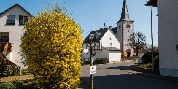 Bettenfeld - Sankt Johannes der Täufer