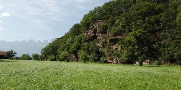 Blick von der Ebene auf den Hügelberg