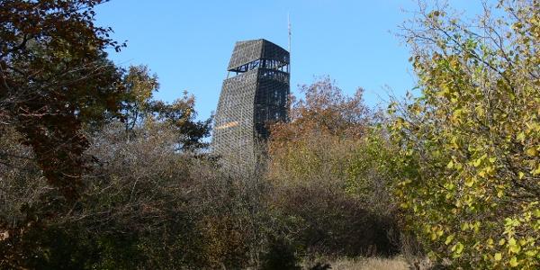 A 23,5 méter magas Csergezán-kilátó a Nagy-Kopasz tetején áll