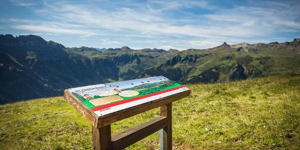 Informationstafel mit Spitzmeilen im Hintergrund
