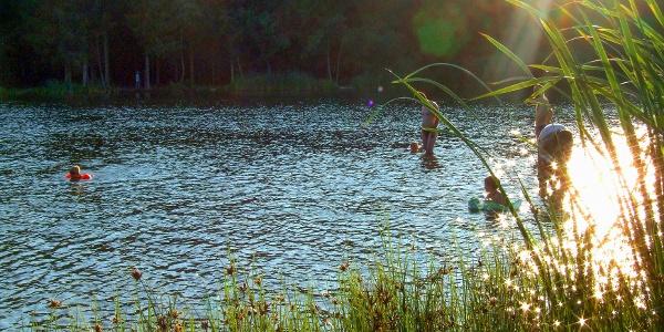 Fürdőzők a Hársas-tóban