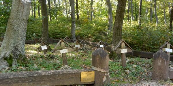 12 katonai kutyát temettek el ebben a csendes kis temetőben