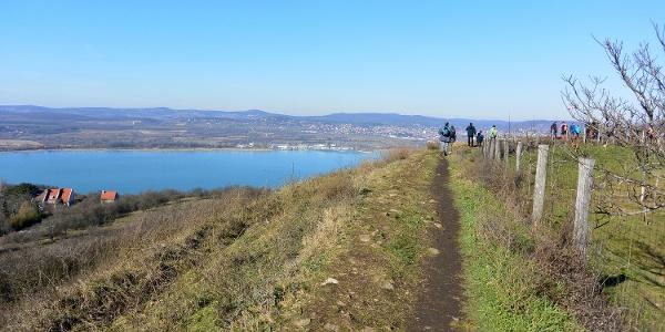 Az óvári földvár fal mentén, a Balaton felett