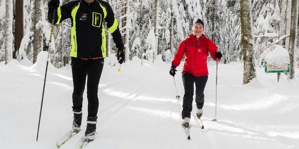 Langlauf auf der Freiersberger Loipe in Bad Peterstal-Griesbach