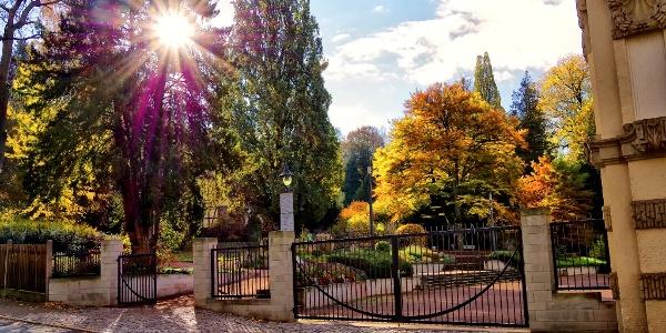 Blick in den Eisenacher Karthausgarten