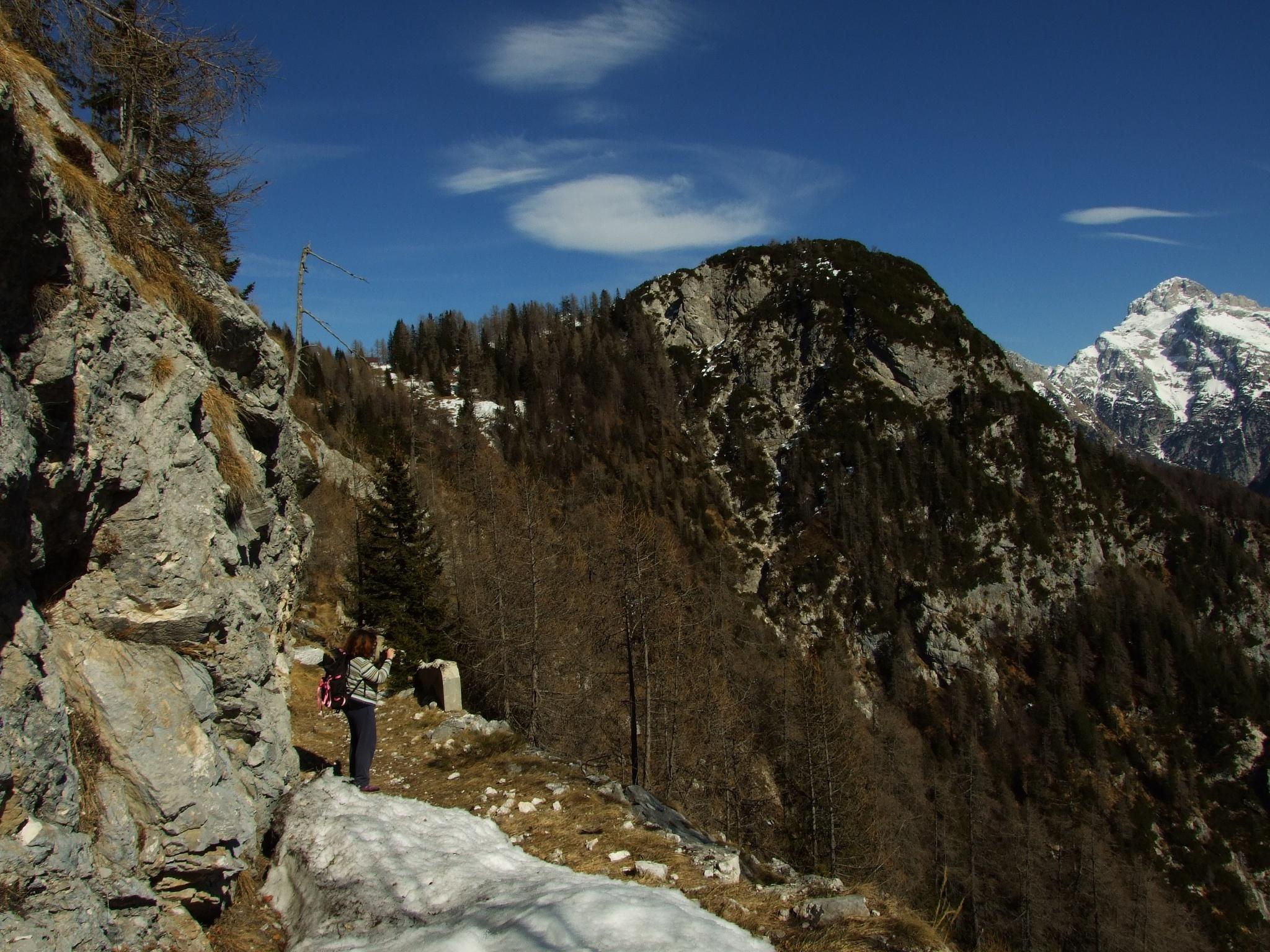 Hiking trail to the Berebica Mountain pasture • Hiking Trail