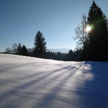 Winterwanderweg beim Hanuselhof, Hellengerst