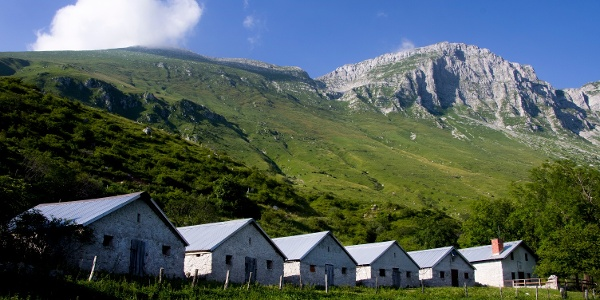 Sleme Mountain pasture