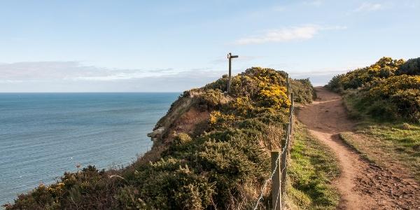 Coastal Path near Robin Hood's Bay