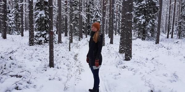 Talvikävelyreitti
