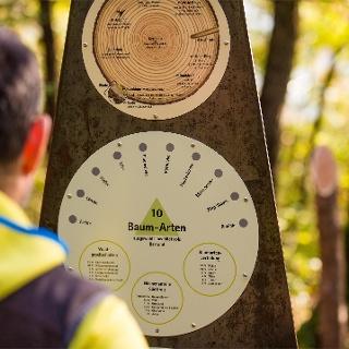 Nature theme trail in Tramin