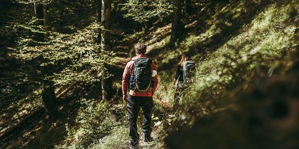 Luchs Trail 01-3