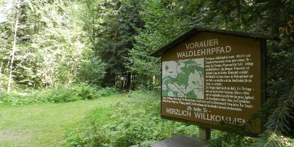 """Über 60 Lehrtafeln informieren über das Thema """"Leben im Wald""""."""