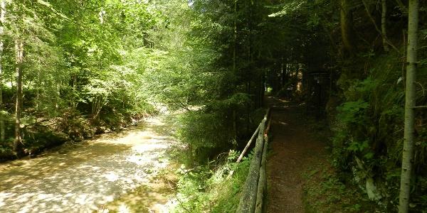 Ein Teil des Lehrpfades führt entlang der Brühl.