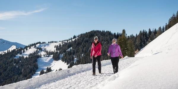 Winterwanderer auf dem Höhenweg zum Berghaus