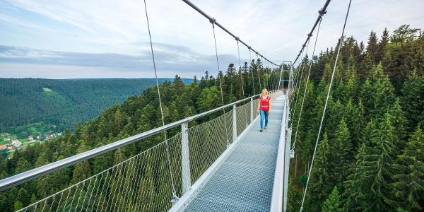 Zu Fuß geht es in bis zu 60m Höhe über das Tal