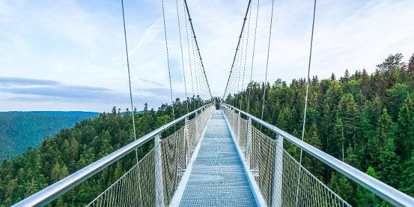 Der Weg über die Brücke ist schmal, aussichtsreich und aufregend!
