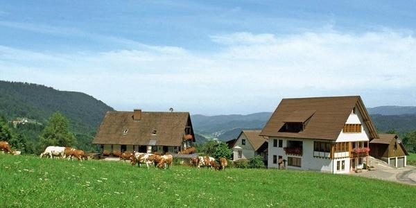 Löcherhansenhof