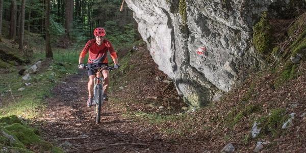 Uphilltrail 358 Holzknecht