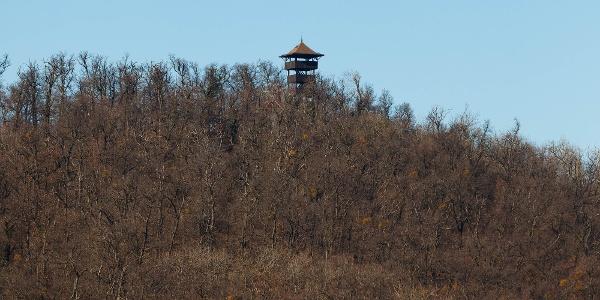 A Nagy-hárs-hegy tetején lévő Kaán Károly-kilátó a Kis-hárs-hegyi Makovecz Imre-kilátóról
