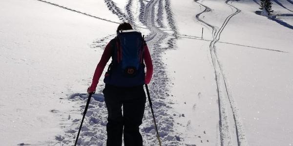 Bergauf mit Schneeschuhen