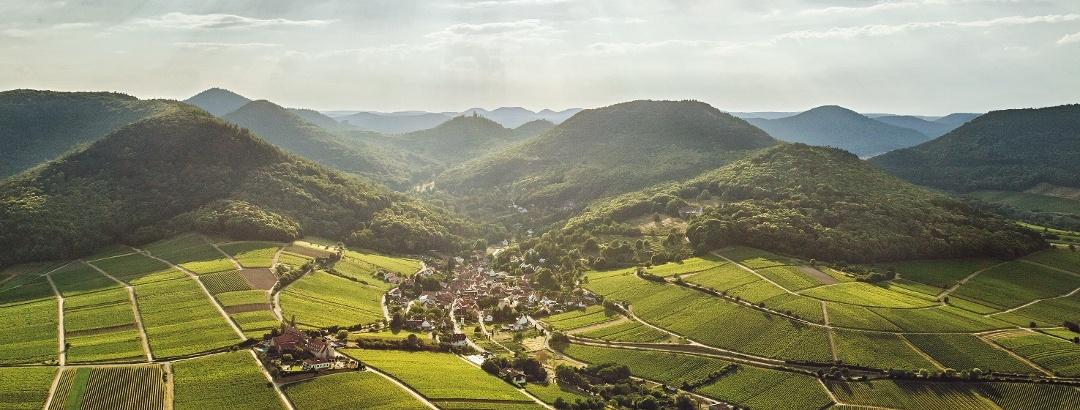 Leinsweiler Luftbild