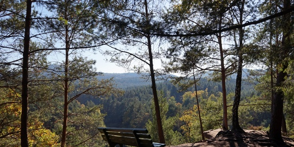 Blick ins Dahner Felsenland
