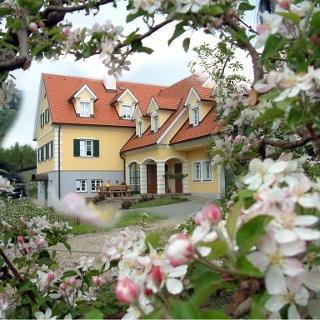 Haus mit Blüten