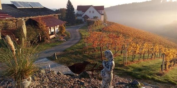 Weingut Ludwigshof_Zierer_