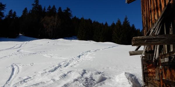 Vor dem Wald bei Sut Seivs