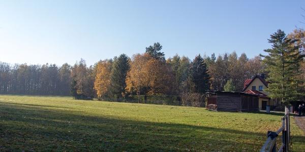 Die einzige Wiese auf dem Windberg-Plateau (Kilometer 0,1)