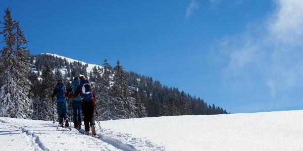 Plateau um 1565m mit Gipfelblick