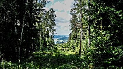 Blick vom Hirschenstein auf das Kirchberger Granitgebiet