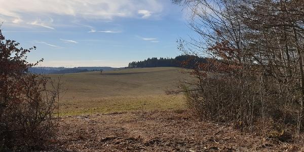 Wiesen- und Felderlandschaft