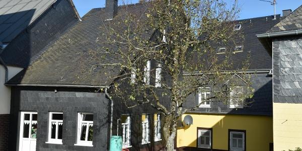 Fronhofen