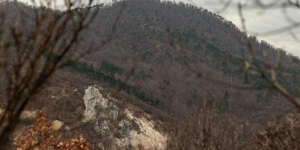 A János-hegy az Erzsébet-kilátóval és a Tündér-szikla a Hunyad-orom csúcsáról