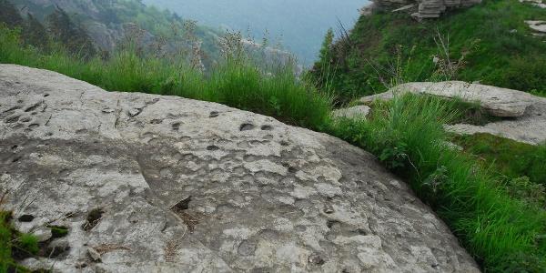 In den Stein gehauene Hohlformen (Coppelle) aus der Bronzezeit am M.Rocceré.
