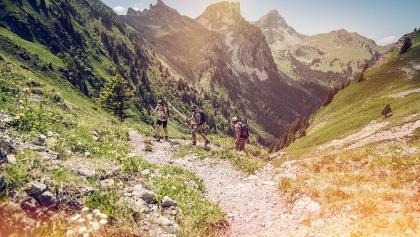 Hiking, lower Valais ((Château d'Oche und Dent d'Oche in the background)
