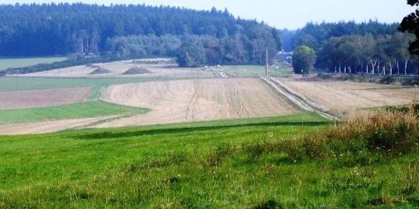 Wald- und Wiesenlandschaft im Hunsrück