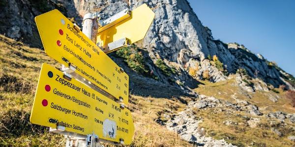 Unterwegs zwischen Dopplersteig und Thomas Eder Steig