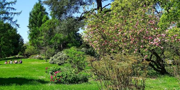 Botanischer Garten Genf.