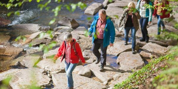 Erfrischender Start des Schwarzwaldsteigs im Bachbett der Rench