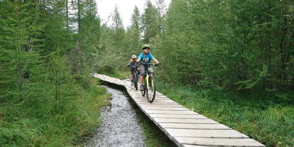 An ideal beginner's trail