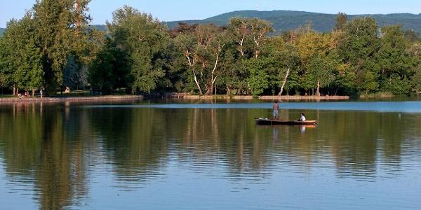 A tatai Cseke-tó