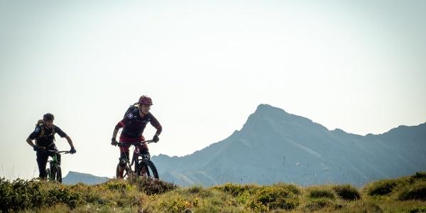 Zwei Biker auf dem Trail