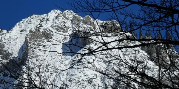 Die winterliche Ostseite des Schönhalterecks vom unteren Karlgraben aus gesehen