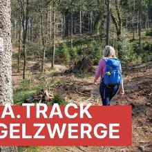 TERRA.track Hüggelzwerge bei Hasbergen