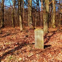 Historische Grenzsteine entlang der Hiwweltour